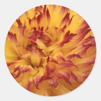 Dahlia Round Sticker