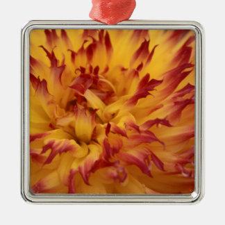 Dahlia Silver-Colored Square Decoration