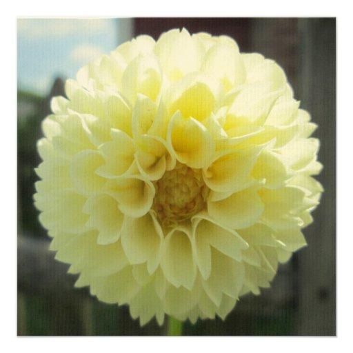 Dahlia Sunlit Yellow Flower Personalized Invitations
