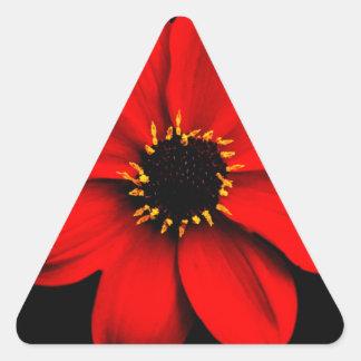 Dahlia Triangle Sticker
