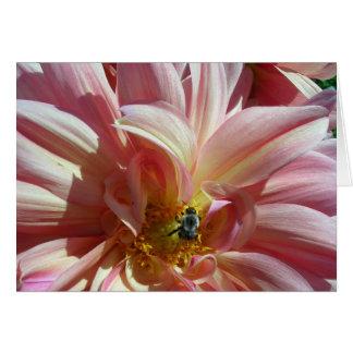 Dahlia with Bee Card