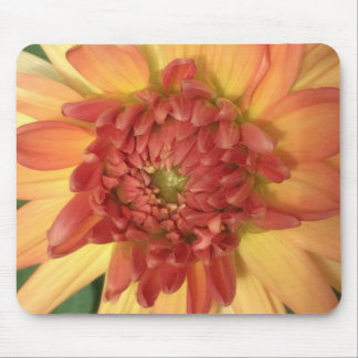 Dahlia: Yellow and salmon --- Mouse Mat