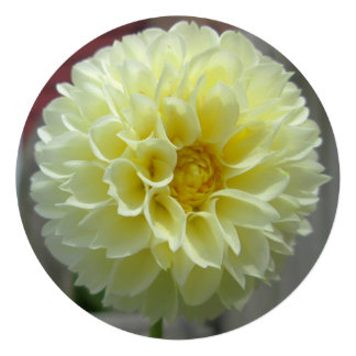 Dahlia Yellow Angle Flower Custom Invite