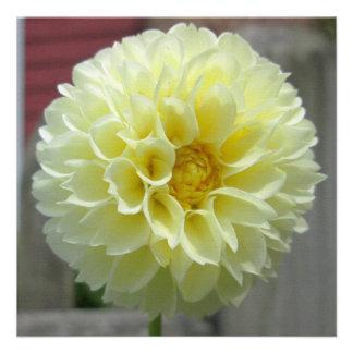 Dahlia Yellow Angle Flower Invitation