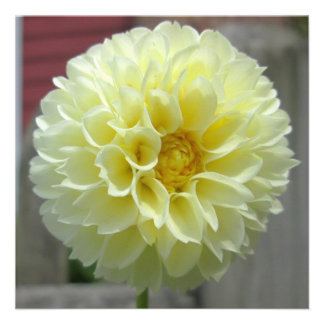 Dahlia Yellow Angle Flower Personalized Invitation