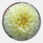 Dahlia Yellow Angle Flower Round Stickers