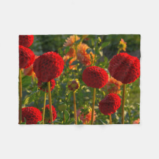 Dahlias, dahlia farm, Canby, Oregon, USA 3 Fleece Blanket