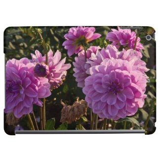Dahlias, dahlia farm, Canby, Oregon, USA 5 iPad Air Case
