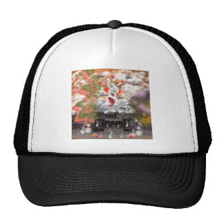 Daikoku it causes, the cat float island shrine cap