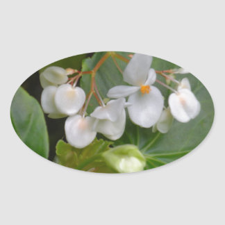 Dainty Cluster of White Flowers Oval Sticker