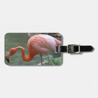 Dainty Flamingo Luggage Tag