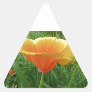 Dainty Orange Posie Triangle Stickers
