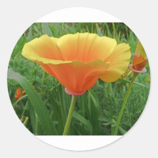 Dainty Orange Posie Stickers