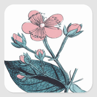 Dainty Pink Floral Square Sticker
