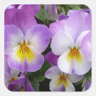 Dainty Violas Stickers