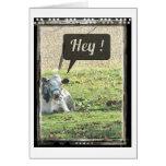 Dairy Cow Hey! Greeting Card