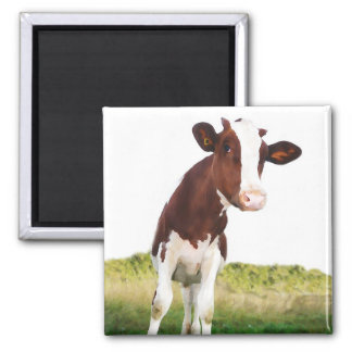 Dairy Cow -  Painted Brown & White Holstein Square Magnet