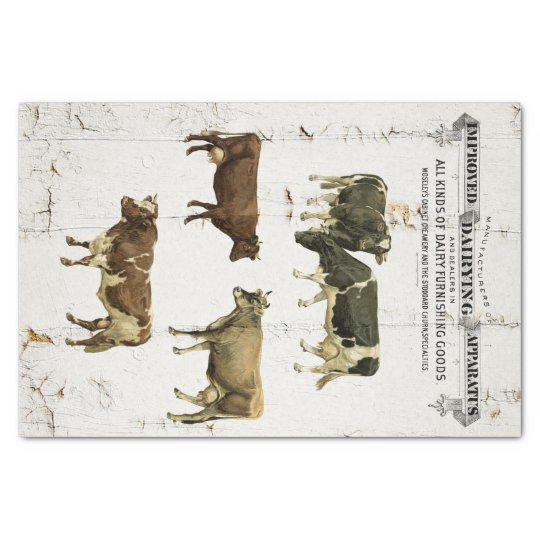 Dairy Cow Vintage Style Old Rustic Cows Tissue