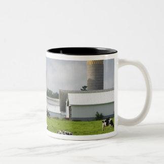 Dairy cows and farm near Taylor County 2 Two-Tone Coffee Mug
