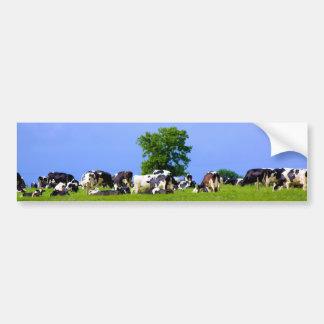 Dairy farm bumper stickers