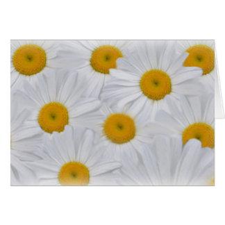 Daisies 6 greeting card