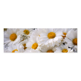 Daisies Abound [Skinny] Pack Of Skinny Business Cards