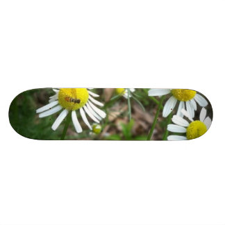 Daisies and Fly Skate Deck