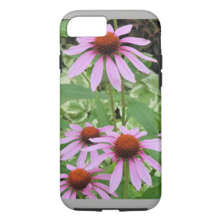 Daisies Apple iPhone Case