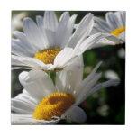 Daisies Daisy Flower Tile