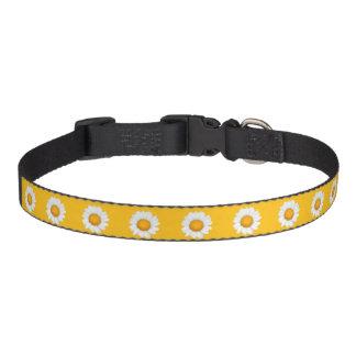 Daisies Dog Collars