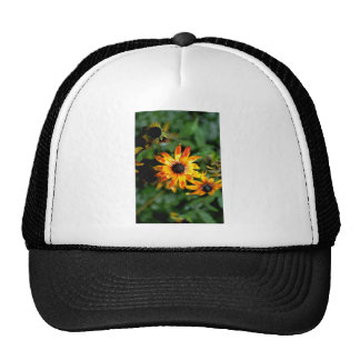 Daisies  flowers mesh hat