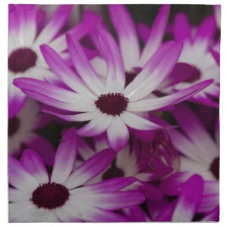 daisies in spring cloth napkin