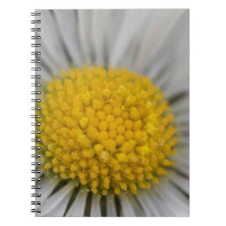 daisies in spring spiral notebook