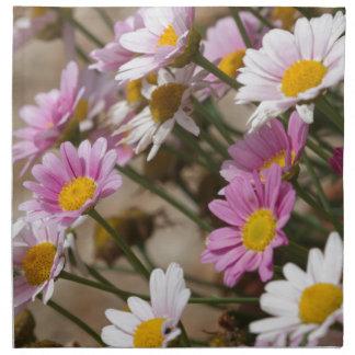 daisies in the garden napkin
