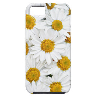 Daisies iPhone 5 Cover