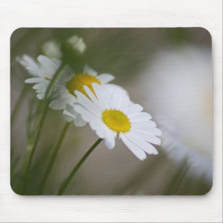 Daisies Mouse Mat
