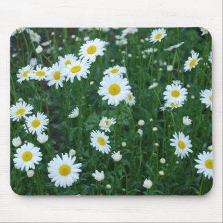 Daisies - Mousepad