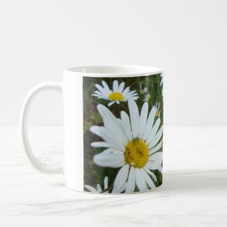Daisies - Mug