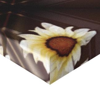 Daisies on brown canvas print