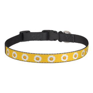 Daisies Pet Collar