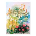 Daisies Postcard
