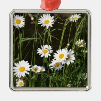 Daisies Silver-Colored Square Decoration