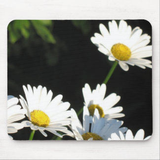 Daisises Mouse Pad