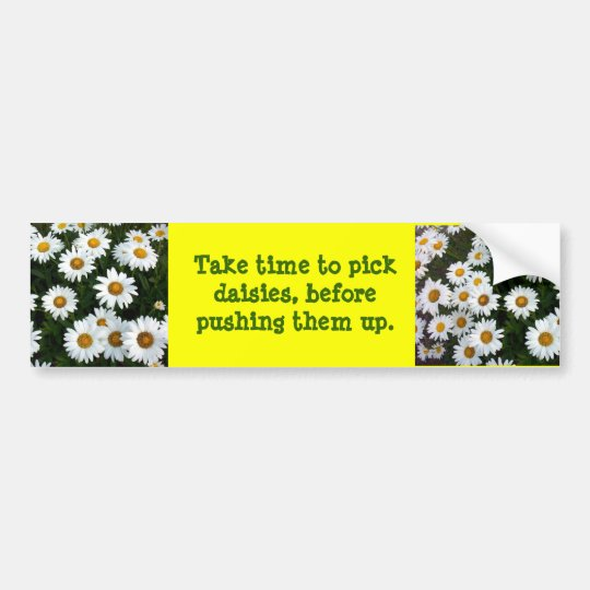 Daisy advice Bumper Sticker