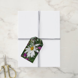 Daisy and Fireweed Gift Tags