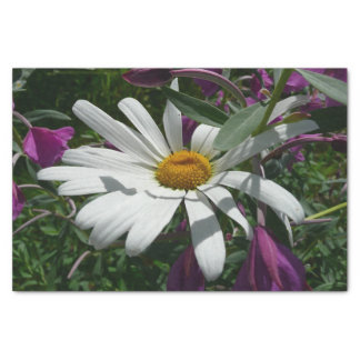 Daisy and Fireweed Tissue Paper