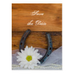 Daisy and Horseshoe Western Wedding Save the Date Postcard