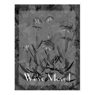 Daisy Art New Address Floral Postcard