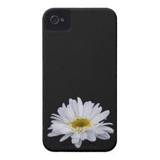 Daisy Blackberry Bold Case