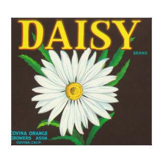 Daisy Brand Citrus Crate Label Canvas Print